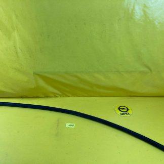 NEU + ORIGINAL Opel Diplomart B V8 5,4 Stoßstange Stoßleiste Gummileiste Leiste